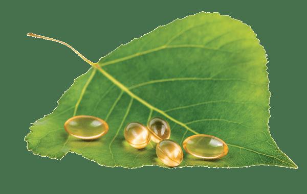 Omega 3 и микроэлементы