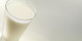 Коктейль с вкусом ванили/HP VANILA MILK SHAKE 15 порций